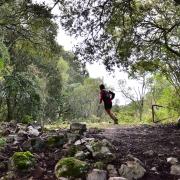 Gutturu Mauris - Foresta del Marganai