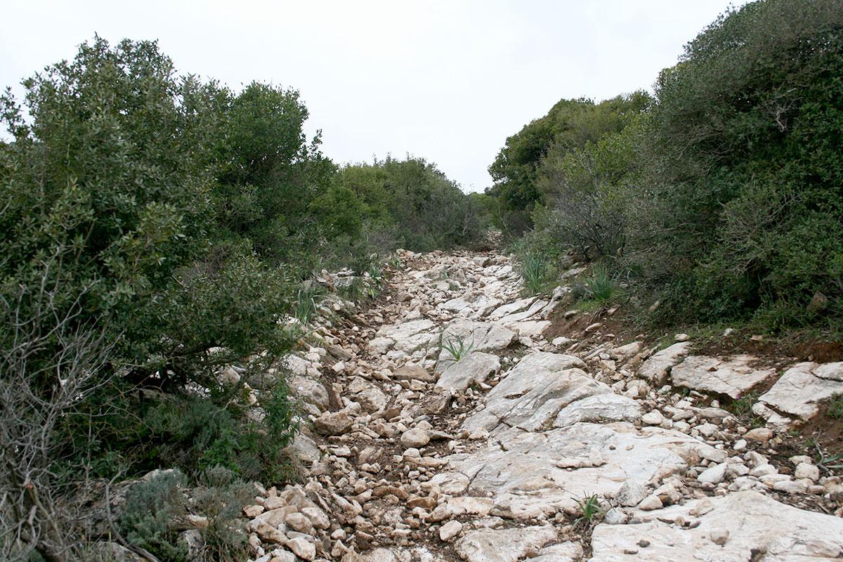 Il sentiero di sassi