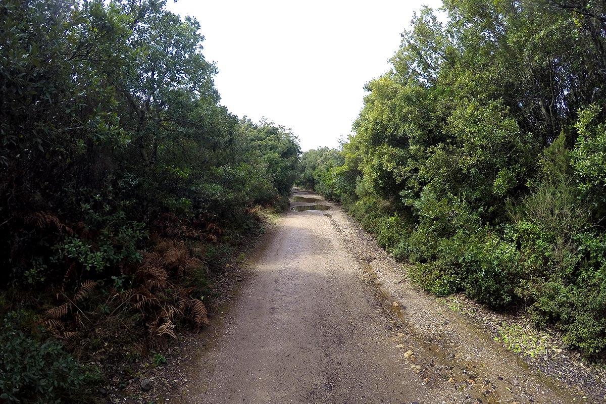 Direzione Punta San Michele