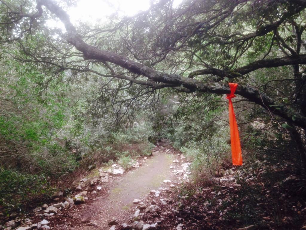 Tracciatura del percorso del Trail del Marganai